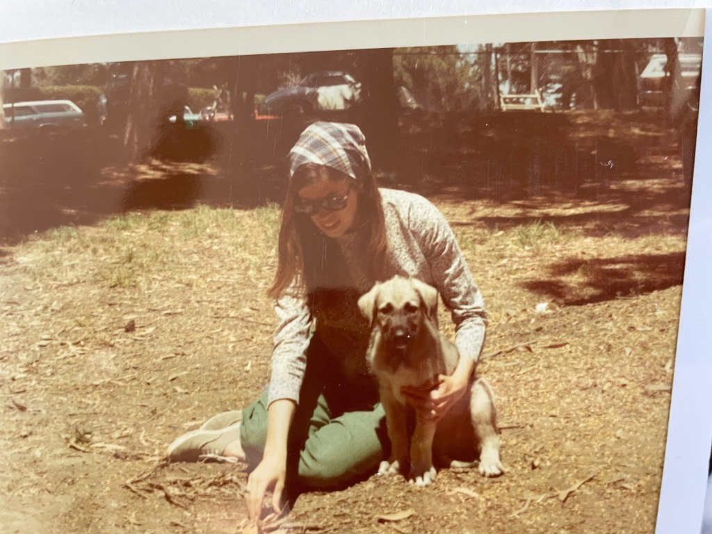 My mom sitting on the ground in the sunshine with an Irish wolfhound puppy